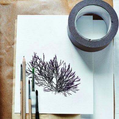 Molesworth & Bird Seaweed Painting