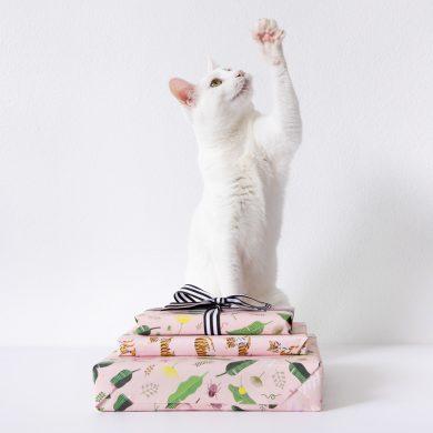 Cat and Presents