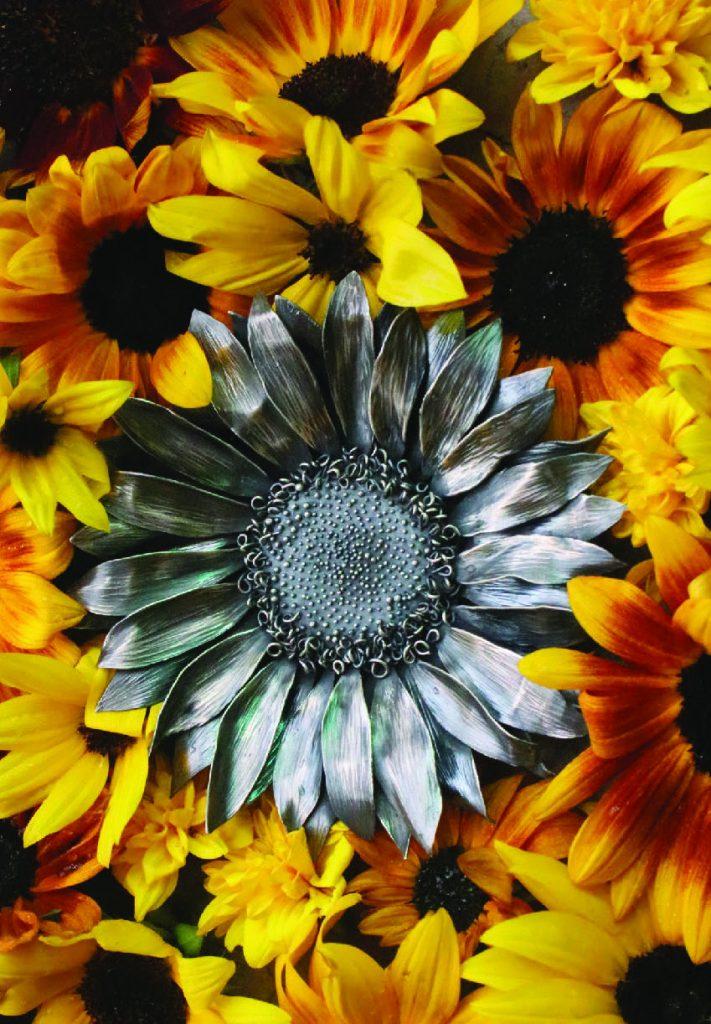 Nicole Ringgold Sunflower